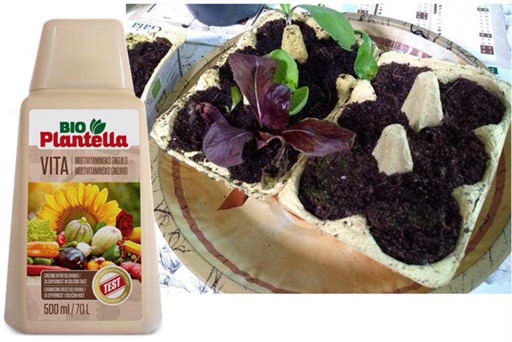 Sadike potrebujejo prehrano - organsko gnojilo z aminokislinami Bio Plantella Vita