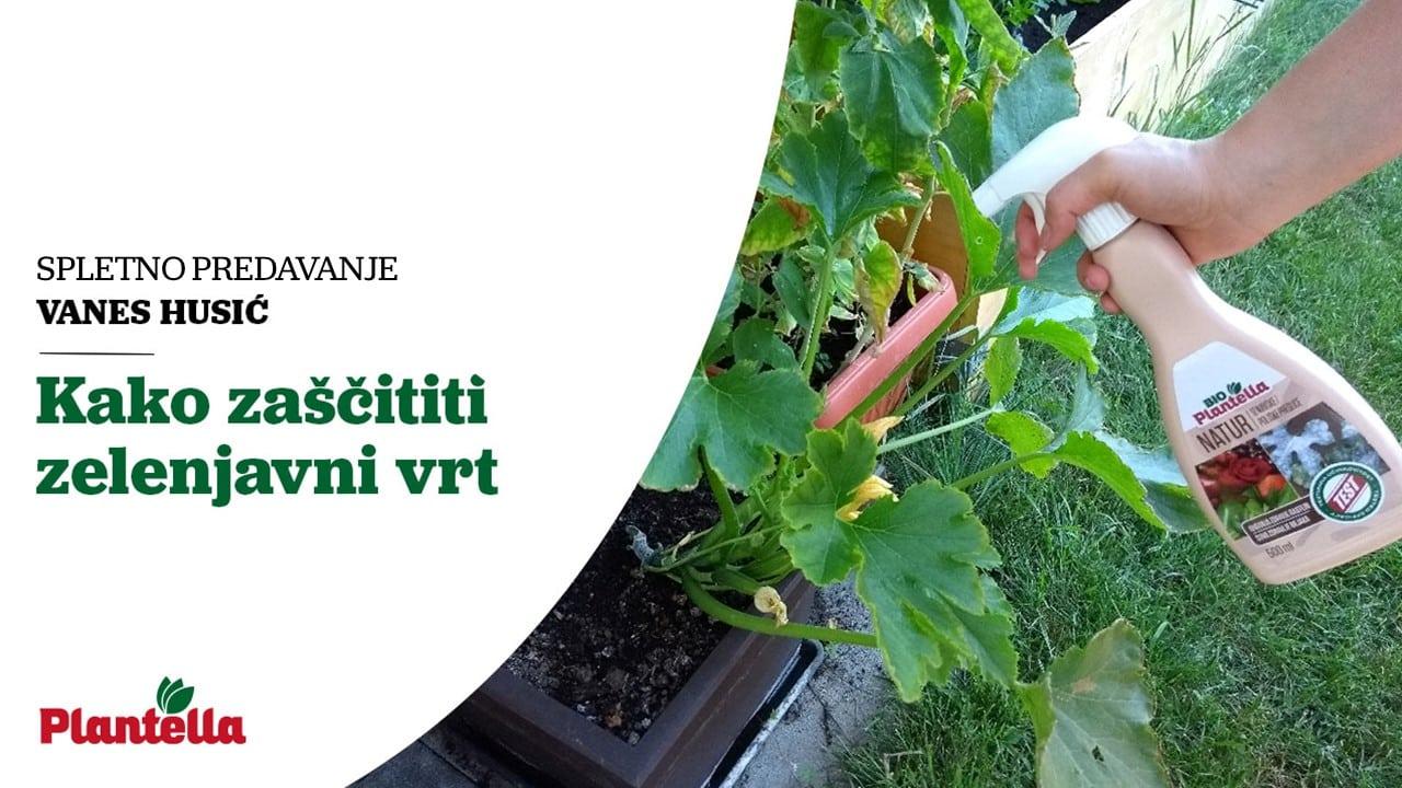 Zaščita zelenjavnega vrta - predavanje